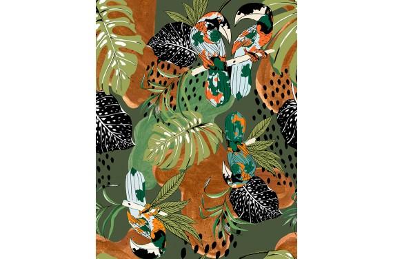 Brazilian toucans 1
