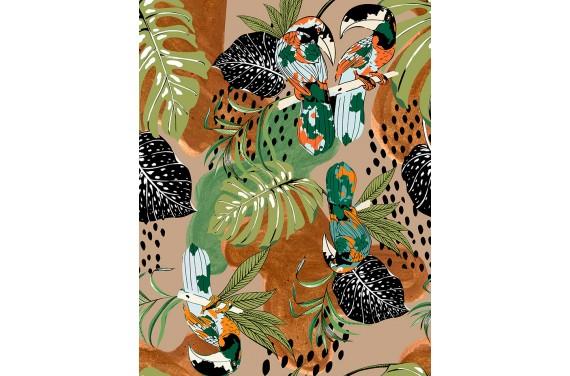 Brazilian toucans 2
