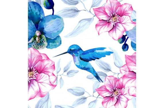 Pink & blue 1