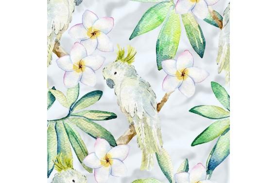 Summer parrots 4