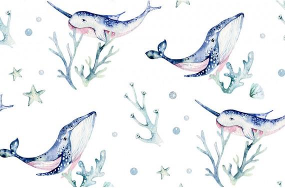 Sea life 2