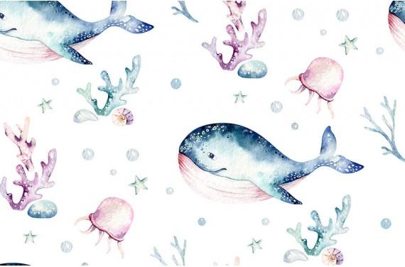 Sea life 6
