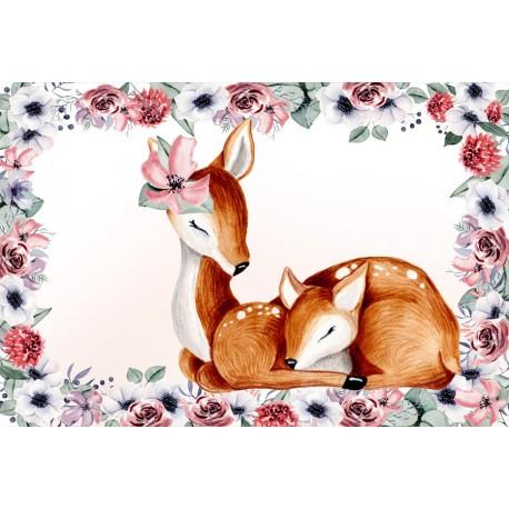 Lovely deer 1