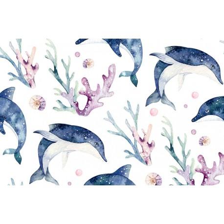 Sea life 4