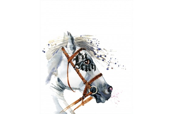 Dressage Horse 1