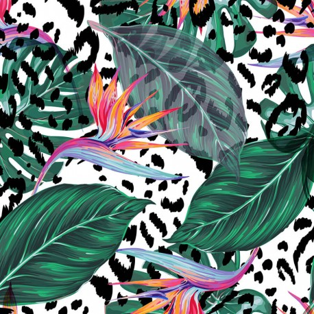 Tropical flower 8