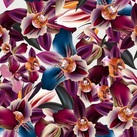Orchid flowers 1