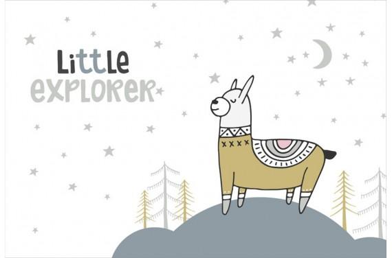 Little explorer 2