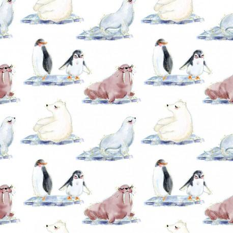 Arctic animals 8