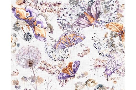 Night butterflies 1