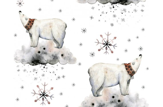 Polar night 1
