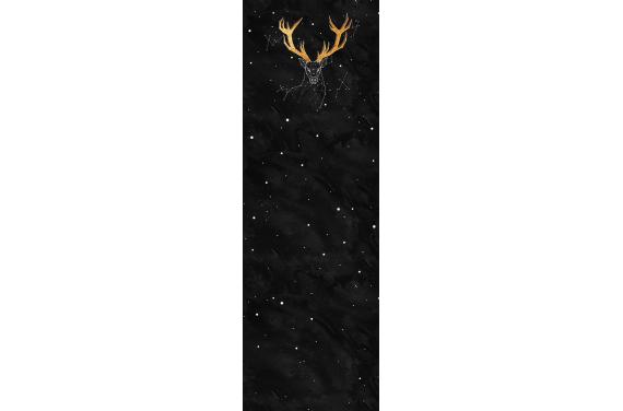 Constellation 2- вставка для тележки