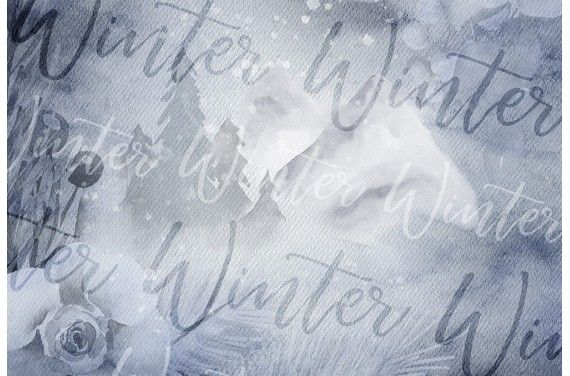 Winter forest 4