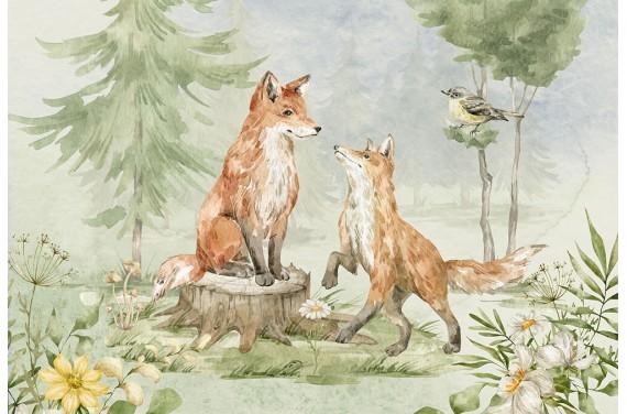 Animal & nature 1
