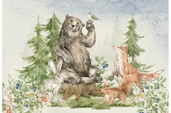 Animal & nature 2