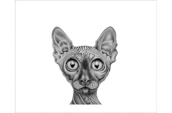 Панель для мешка - кот - 50x40 см