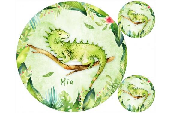 Iguana + pillow FREE!