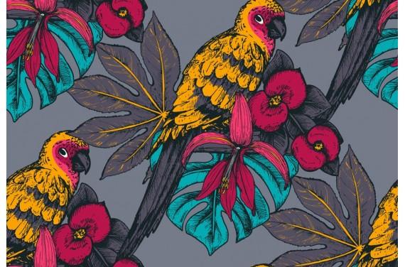 tropic_bird-1