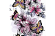 Butterflies on black 2 dzianina