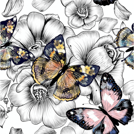 Butterflies on black 3 dzianina