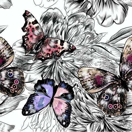 Butterflies on black 1