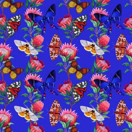 Summer butterfly 1