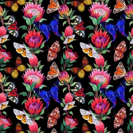 Summer butterfly 2