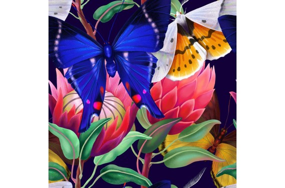 Summer butterflies 7