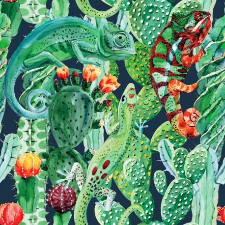 Chameleon & cactus 1