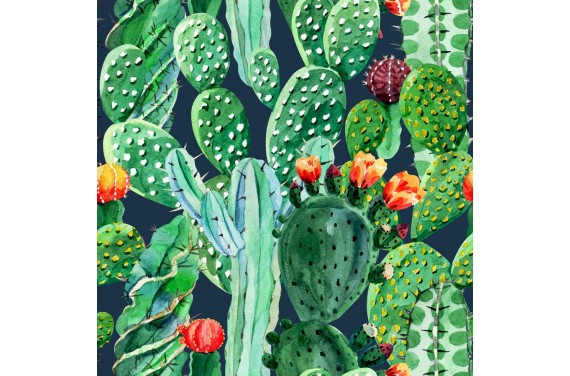 Chameleon & cactus 2