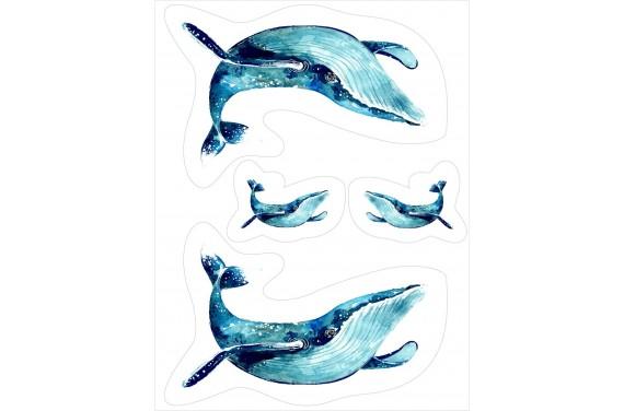 Wieloryb - L