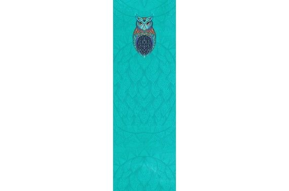 Colorful owl trolley insert