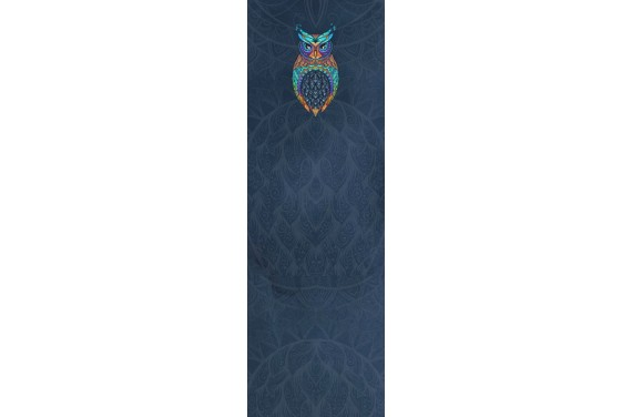 Colorful owl dark Wageneinsatz
