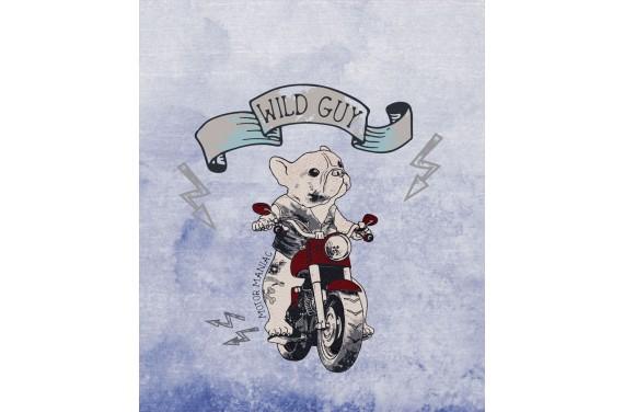 Wild guys 2