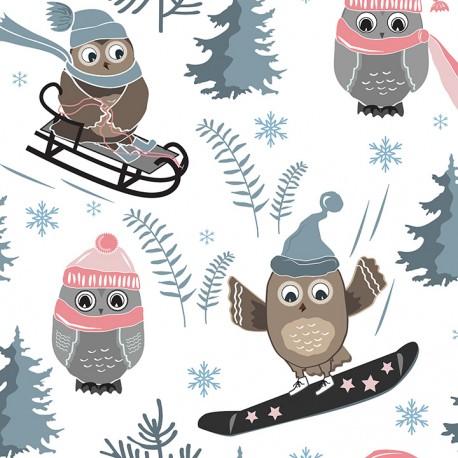 Winter owl 1